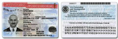 Employment Authorization Document, New Design